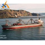 Multi imbarcazione di carico cinese del contenitore di scopo PMP (produzione massimale possibile)