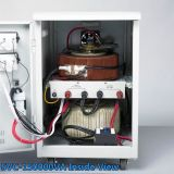 Stabilizzatore approvato di tensione di frequenza 3000va del Ce ambientale per il calcolatore dell'automobile
