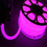 Ce Rhos Voyants au néon de corde Flex Flex intérieur extérieur néon LED pour magasin ouvert signes Flex 24V 12V FEU DE CORDE