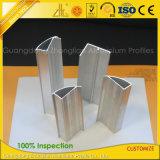Bâti en aluminium d'extrusions anodisé par coutume pour faire le réservoir de poissons