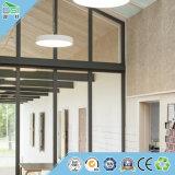 Matériaux de décoration d'écran antibruit de panneau de mur de panneau de plafond