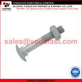 8677 DIN ISO 603 ronde à collet carré à tête bombée boulon à tête bombée avec l'écrou galvanisé à chaud