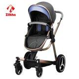 Facile piegare e trasportare i camminatori del bambino