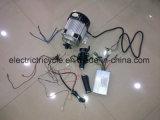 Fabrik-Verkaufs-Ersatzteile für elektrisches Dreirad