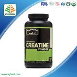 Reines Kreatin-Monohydrat von 200/300 Kapseln für unterstützende Stärke und Energie