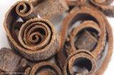 Usine de la poudre d'alimentation de l'extrait de l'écorce Magnolia Magnolol 98 %