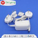 Alimentazione elettrica di commutazione dell'adattatore di CC di CA per l'altoparlante di illuminazione del LED