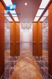 مسافر مصعد بيتيّة مع [بروفسّيونل سرفيس] في سكنيّة/شامل رؤية عمل بناية على مصعد هيدروليّة [سري]