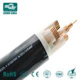 N2xy/Yky/Nyy Nycy/câble d'alimentation