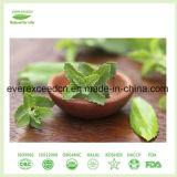 Liquido naturale di Stevia all'ingrosso Pirce all'ingrosso