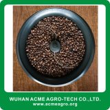 Pequeño asador comercial casero del grano de café