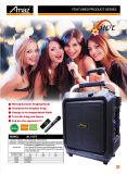 Grand haut-parleur de chariot à usine avec la MIC et Bluetooth pour le karaoke /Portable