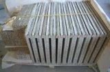 Granito de pedra natural Coutnertop & partes superiores da vaidade para a venda