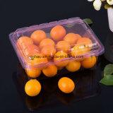 Kundenspezifisches freies/transparentes Frucht-/Kuchen-/Brot-Verpacken- der Lebensmittelbehälter-Wegwerfkunststoffgehäuse