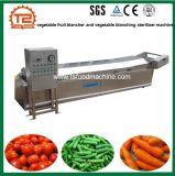 Blancher verduras y frutas y verduras de la máquina esterilizadora escaldado