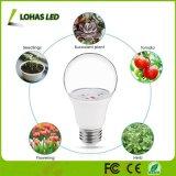 O diodo emissor de luz de E26 6W cresce a ampola para a luz interna de jardinagem da estufa para plantas hidropónicas internas dos vegetais