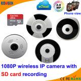 소형 CCTV 사진기 에 오디오 Fisheye