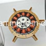 DC 태양 천장 선풍기 모터