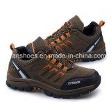 Спорт людей хорошего качества обувает атлетические ботинки Hiking тапка (FSY1129-11)
