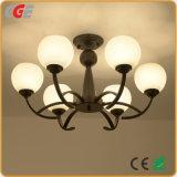 Las luces interiores de la luz de lámpara colgante para interiores modernos con bombilla LED de alta calidad
