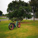 China-elektrisches Fahrrad mit preiswertem Preis