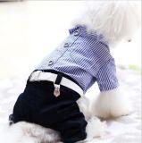 Printemps et été nouveau style de chien de compagnie de vêtements