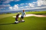 Smartek neues intelligentes 4 Rad-Ausgleich-Roller-Golf-Vorstand Hoverboard Golf-elektrischer Roller mit Griff für Erwachsen-Golf Vorstand
