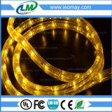 Lumière de bande à haute tension de la piscine IP68 3528/60LEDs/m RVB DEL