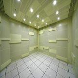 Panneau de plafond perforé de tuile de plafond d'aluminium décoratif intérieur insonorisé/en métal de panneau avec le prix usine