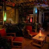Hangende Lamp van de Tuin van de Fles van de Wijn van de plastic LEIDENE de ZonneLichten van de Fles Lichte voor Terras Esg10130 van de Binnenplaats van de Tuin van de Partij het Openlucht