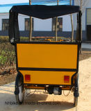 小屋が付いているよい価格3の車輪の電気三輪車