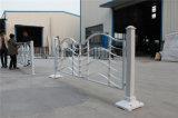 Haohan 고품질 직류 전기를 통한 강철 알루미늄 합금 장식적인 발코니 가로장으로 막는 18