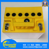 Ausgezeichnete Qualitätsgute Preis-Rasenmäher-Batterie 12V 24ah