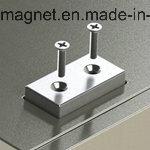 Magnete sinterizzato permanente della terra rara di NdFeB di rettangolo
