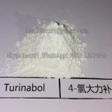 99% Turinabol 경구 높은 순수성 4-Chlorodehydromethyltestosterone 스테로이드 분말