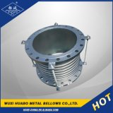 Lisciare il tubo ondulato parte interna dell'acciaio inossidabile del foro