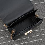 2017人の卸し売り新しい方法女性のハンド・バッグ(42508)
