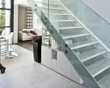 Innentreppe/milderte modernes Glastreppenhaus mit ISO-Cer