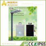 12W alle in einem Solargarten-Licht mit PIR Fühler