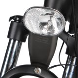 Venta al por mayor Bicicleta del motor eléctrico de 250W 36V con ruedas de la mag