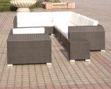 屋外の家具または防水ソファーの別のソファーは形づく(SC-B6018-B)