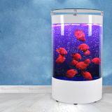 El tanque de pescados de acrílico de Eco del semicírculo creativo de encargo de la sala de estar