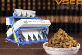 Machine neuve de trieuse de couleur de raisin sec