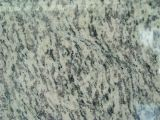Popular Tiger Skin Yellow Granite Tile com preço competitivo