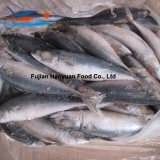 Super Frozen Seafood Pacific Mackerel