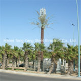 Comunicação Celular Palmeira camuflar a torre da Antena