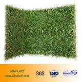 عشب اصطناعيّة (ماس شكل مغزول) لأنّ يرتّب, حد, زخرفة