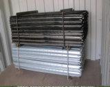 1650mm 1800mm 호주 까만 가연 광물 별 말뚝 또는 강철 검술 포스트