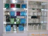 Ясный/белый покрашенный стеклянный блок для мебели стены