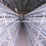 自動BroilerのためのType Chicken Cage System